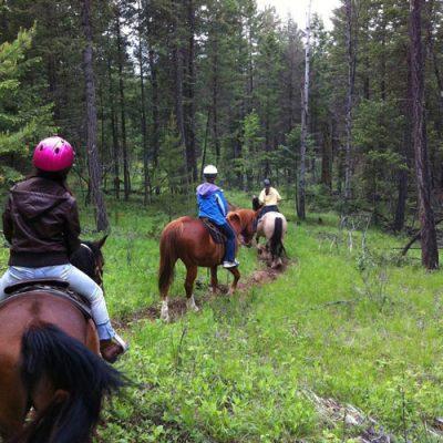 trail-rides